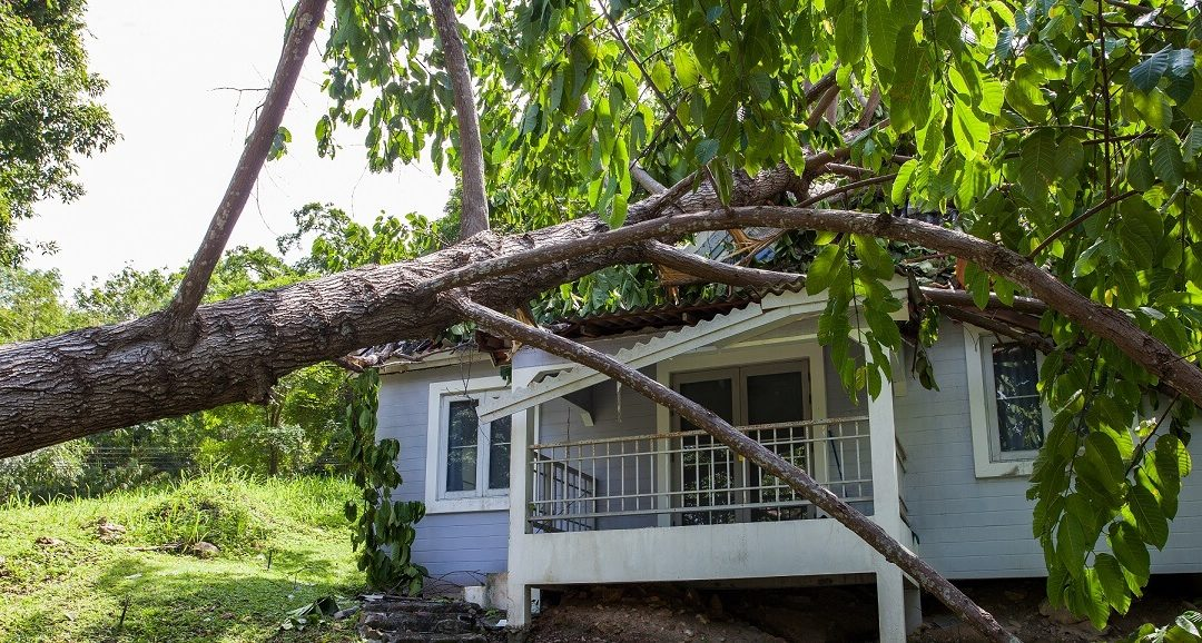 Hurricane Checklist: Top 8 things to consider after a hurricane