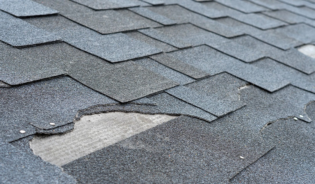 Why You Should Have Your Roof Inspected